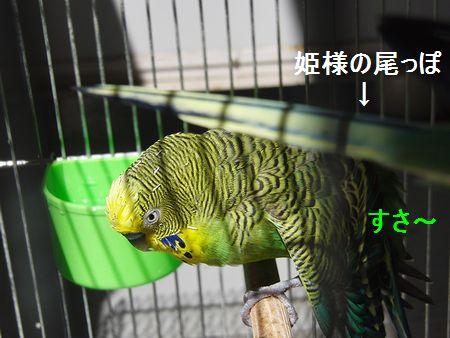 f0196665_903896.jpg
