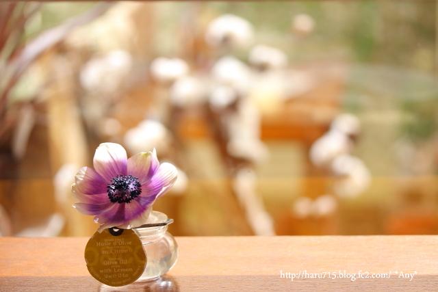一輪の花を…_e0347431_11455504.jpg