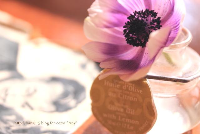 一輪の花を…_e0347431_11455554.jpg