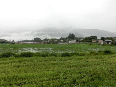 我が町・小淵沢_f0019247_1394650.jpg