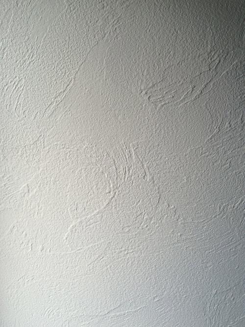 しっくいを塗りました_a0148909_17533538.jpg