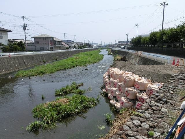 ボランティアの草刈りでは対応不可 上流から流れ込む小潤井川の土砂堆積_f0141310_7531038.jpg