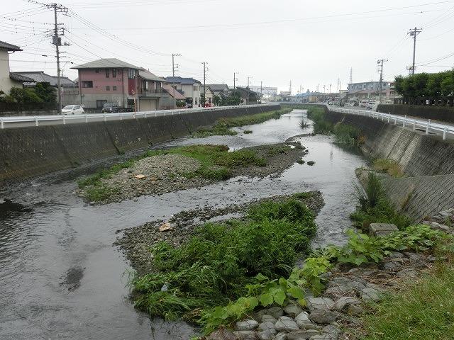 ボランティアの草刈りでは対応不可 上流から流れ込む小潤井川の土砂堆積_f0141310_7535786.jpg