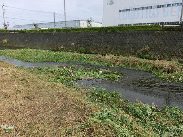 ボランティアの草刈りでは対応不可 上流から流れ込む小潤井川の土砂堆積_f0141310_7542781.jpg