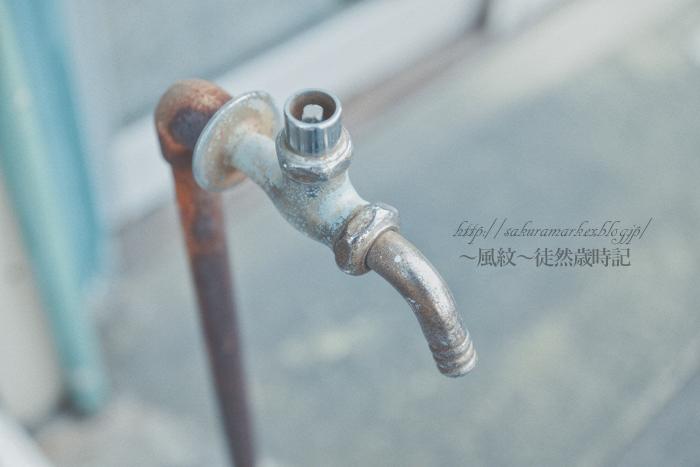 渇水 2015_f0235723_1949554.jpg