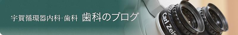 宇賀循環器内科・歯科 歯科のブログ