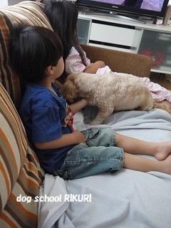 ホテル ~ ジャックくん ~_a0284100_19521563.jpg