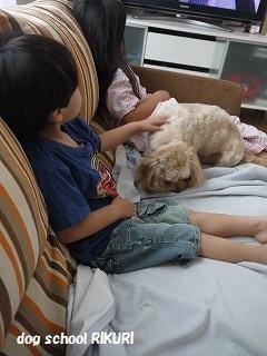 ホテル ~ ジャックくん ~_a0284100_19522421.jpg