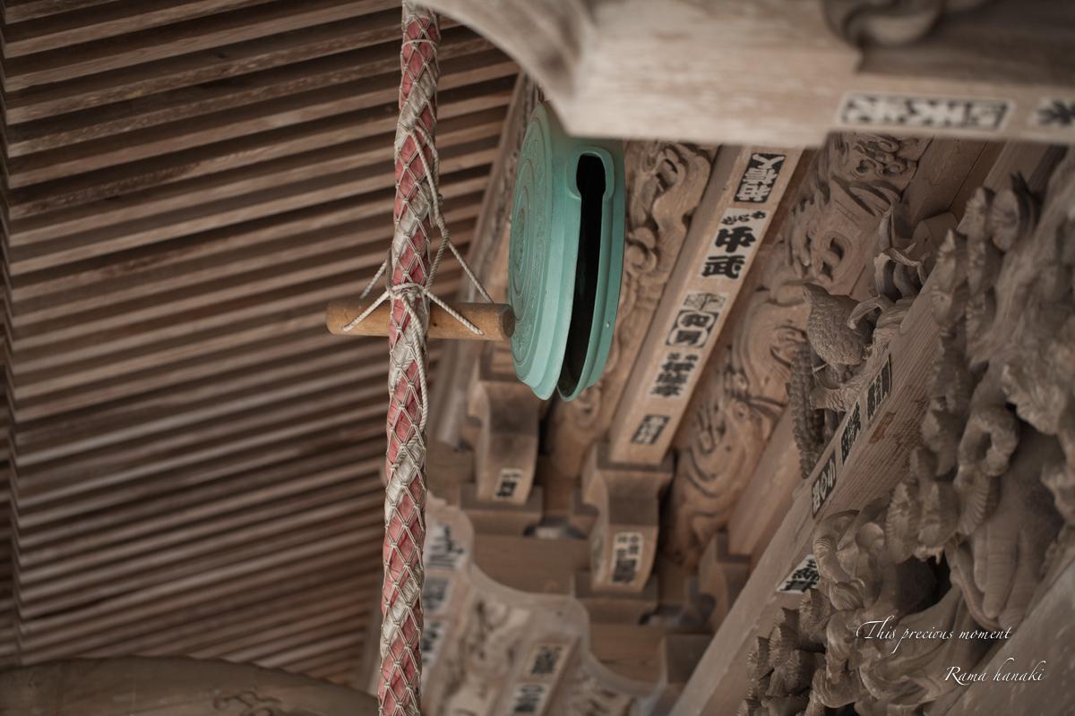 春の海岸寺観音堂で_c0137403_1145935.jpg