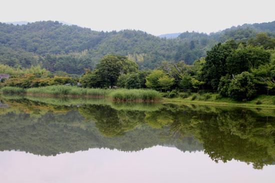 嵯峨野を歩く2 広沢の池から_e0048413_21203567.jpg
