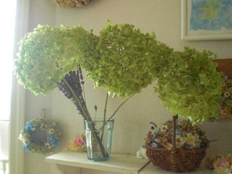 アナベル茎付紫陽花2セット_c0207719_19611.jpg
