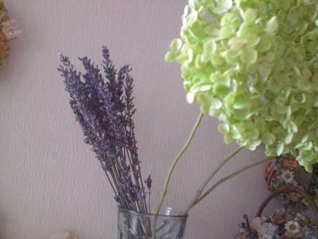 アナベル茎付紫陽花2セット_c0207719_1961768.jpg