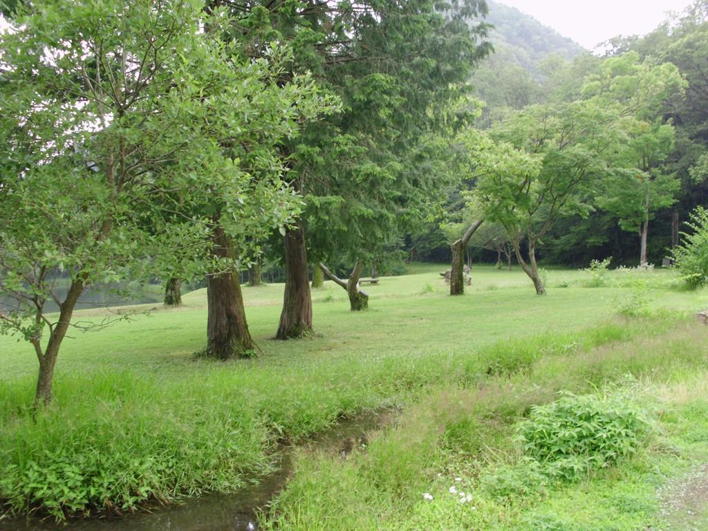各務野自然遺産の森を歩いて・・...