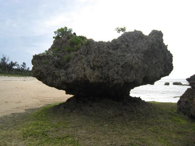 沖縄の旅 その31 On the Beach CAFE    その2_e0021092_11454580.jpg