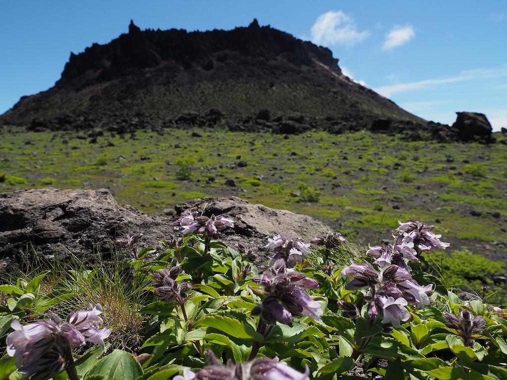 樽前山、7月3日_f0138096_1858931.jpg