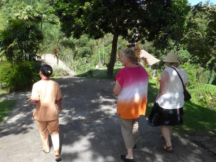 バリ島へ行く。⑧ ~ハイビスカスシャンプーを作る~_f0232060_16475653.jpg