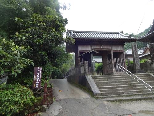 藤井寺-焼山寺初トレイルラン_e0201281_19594643.jpg