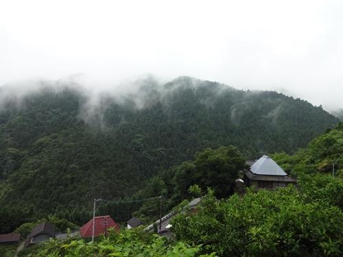 藤井寺-焼山寺初トレイルラン_e0201281_20524393.jpg