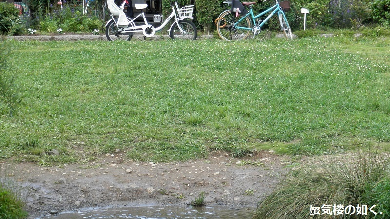 「東のくるめと隣のめぐる」舞台探訪03 落合川と黒目川の合流点から南沢湧水群へ(1・2巻)_e0304702_21384576.jpg