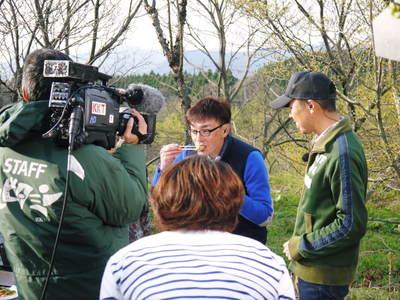 平成27年7月8日(水) KKTくまもと県民テレビ『テレビタミン』の特派員としてデビューします!!_a0254656_18145369.jpg