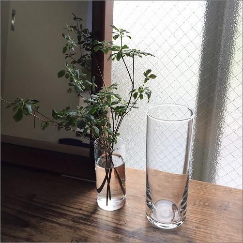 【 IKEAのおすすめガラス花瓶 】_c0199166_11174235.jpg
