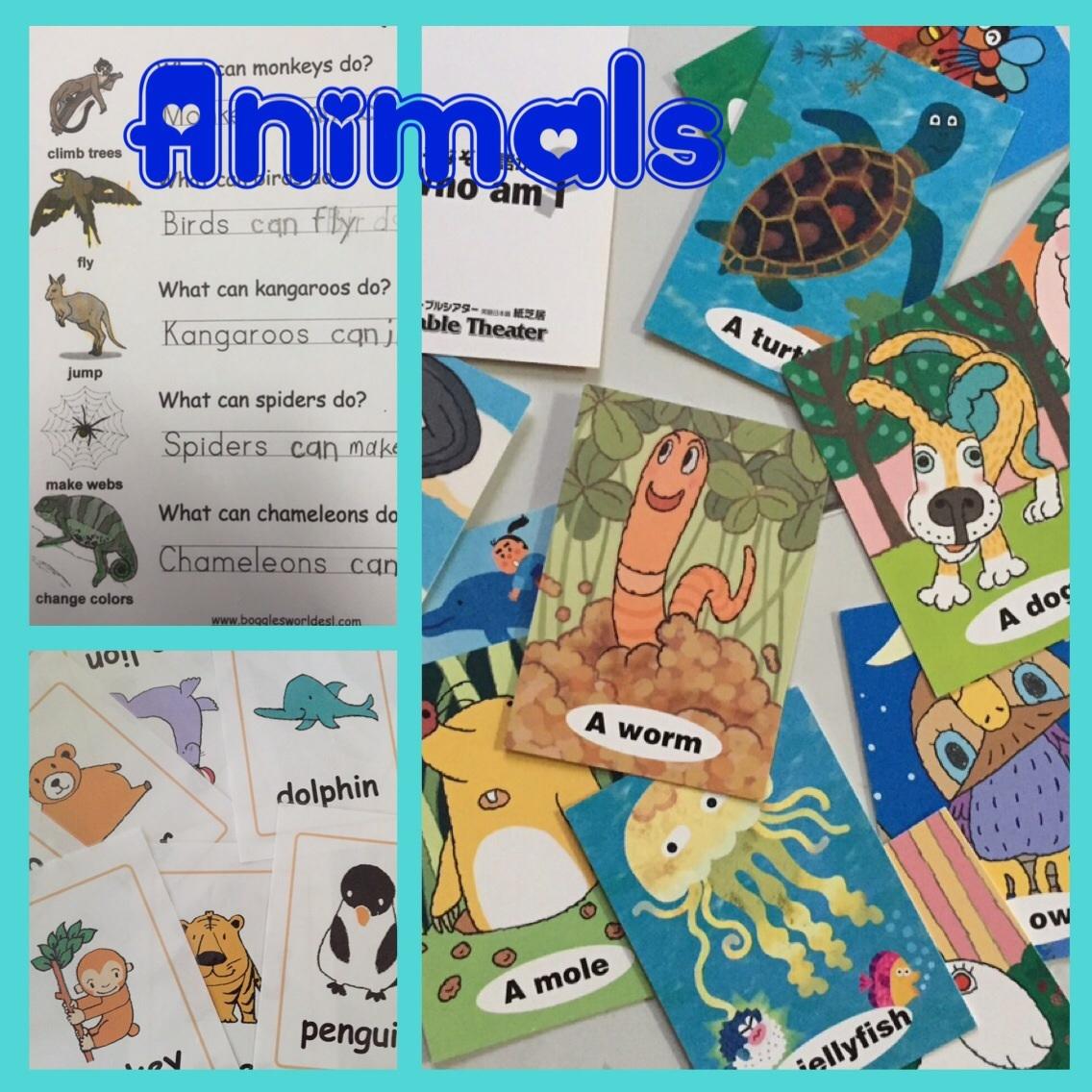 Kids English  Animals❗️_a0285570_09175069.jpg
