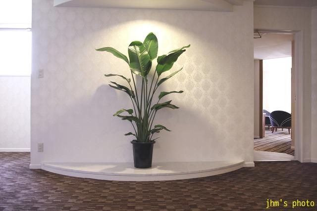 十字街にラグジュアリーなホテルがオープン!_a0158797_23525280.jpg