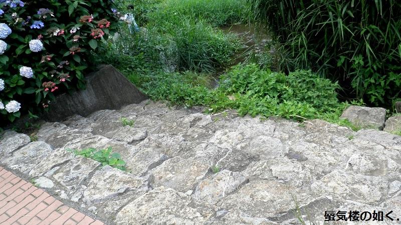 「東のくるめと隣のめぐる」舞台探訪03 落合川と黒目川の合流点から南沢湧水群へ(1・2巻)_e0304702_07544622.jpg