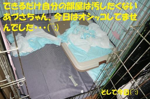 f0121712_15424043.jpg