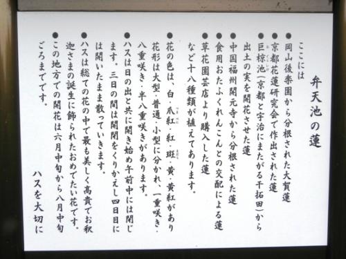 浄瑠璃寺の蓮の花と鎮魂の皿碑 2015_f0213825_15112046.jpg