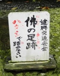 浄瑠璃寺の蓮の花と鎮魂の皿碑 2015_f0213825_1563754.jpg