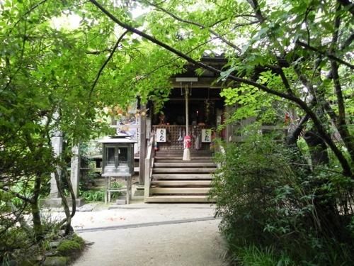 浄瑠璃寺の蓮の花と鎮魂の皿碑 2015_f0213825_1574637.jpg