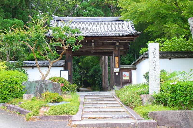 知る人ぞ知る『正伝寺(西賀茂)の庭園』20150617_e0237645_17451546.jpg