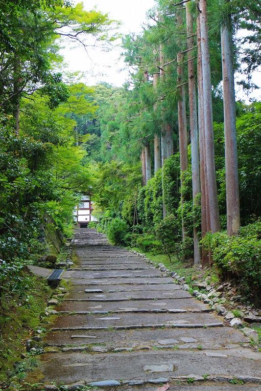知る人ぞ知る『正伝寺(西賀茂)の庭園』20150617_e0237645_1745369.jpg