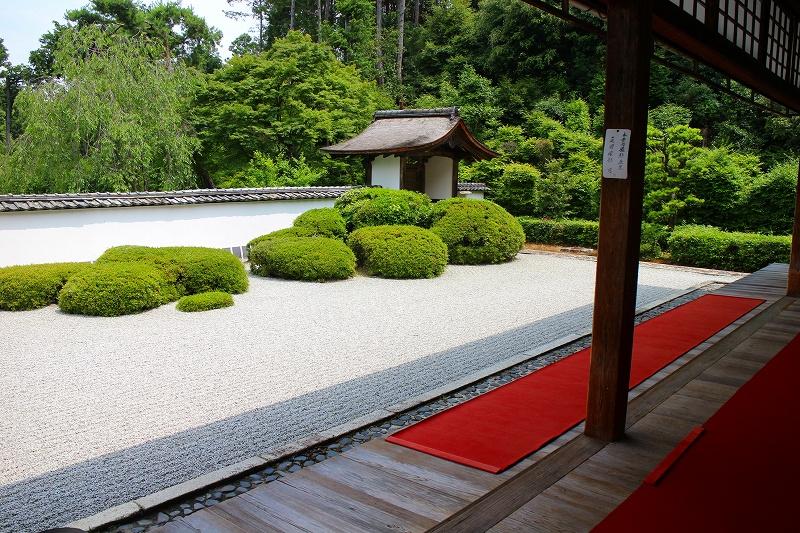 知る人ぞ知る『正伝寺(西賀茂)の庭園』20150617_e0237645_17463167.jpg
