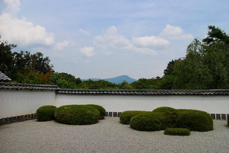 知る人ぞ知る『正伝寺(西賀茂)の庭園』20150617_e0237645_1747578.jpg