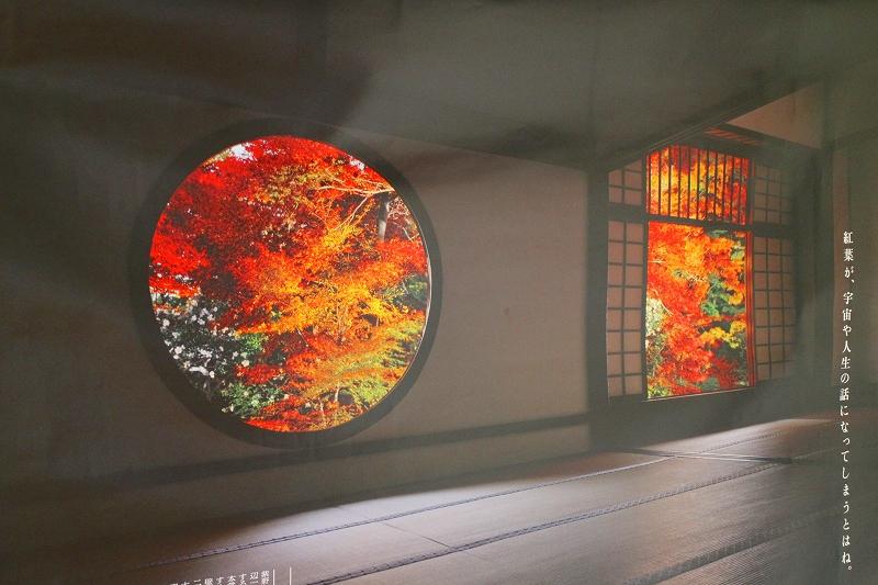 悟りの窓と血天井の『鷹峯源光庵』20150617_e0237645_1842296.jpg