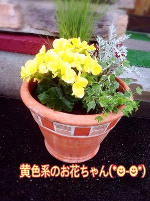 f0207059_17465945.jpg