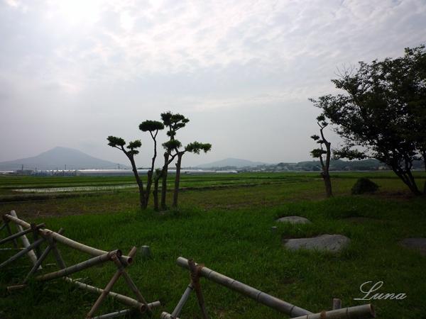 志登支石墓群・倭は朝鮮半島まであったみたいだけど_c0222861_22261413.jpg