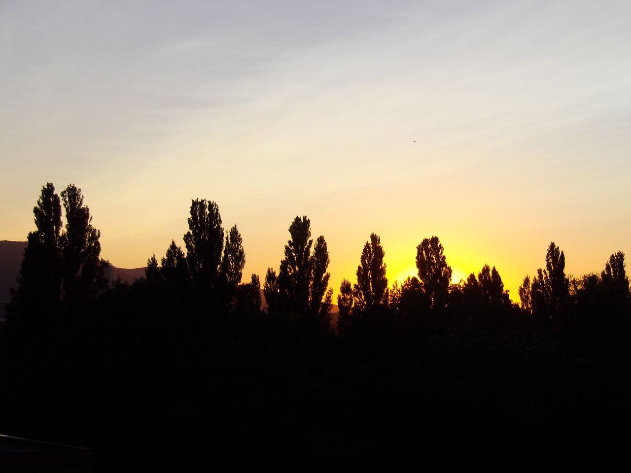 雲のない一日_c0025115_19125234.jpg