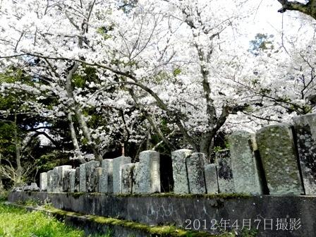 浄瑠璃寺の蓮の花と鎮魂の皿碑 2015_f0213825_9242631.jpg