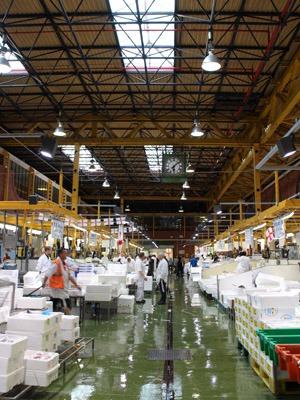 魚市場で1kgの海老を買いました。_b0199526_2246265.jpg
