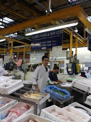 魚市場で1kgの海老を買いました。_b0199526_2252150.jpg
