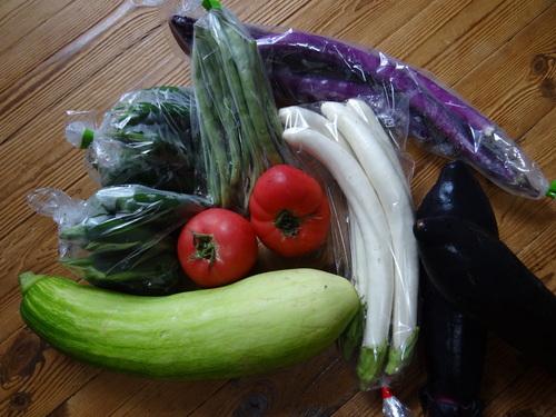 無農薬野菜_e0240147_13494993.jpg