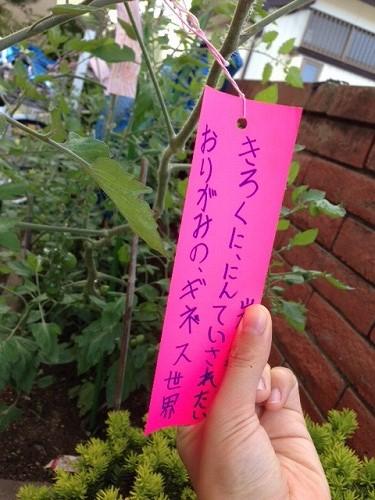 みんなの願い叶え~☆_e0332549_13454110.jpg