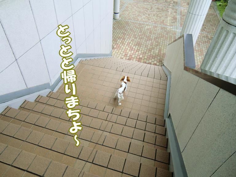 b0279153_1951969.jpg