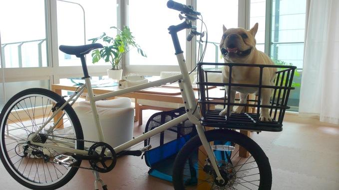 自転車買いました。_f0143269_2231385.jpg