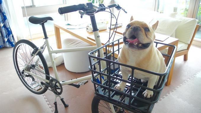 自転車買いました。_f0143269_22314290.jpg