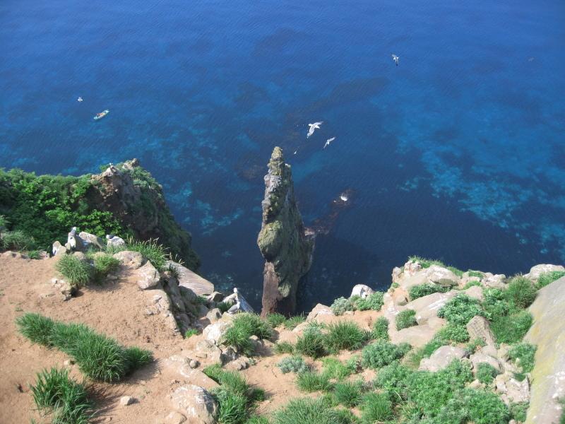 ケイマフリ  北海道旅行その7  赤岩展望台から_a0052080_13052928.jpg