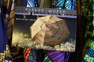 7月・企画「マンドレイクの傘と布展」_f0226293_85321.jpg